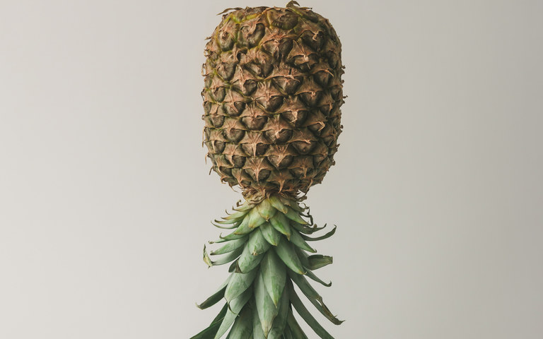 Ripe pineapple on bright background. Minimal fruit concept.